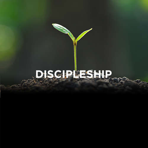 Free Chapel Gwinnett School of Discipleship