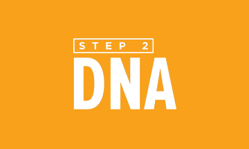 Free Chapel NextSteps - Step 2 DNA